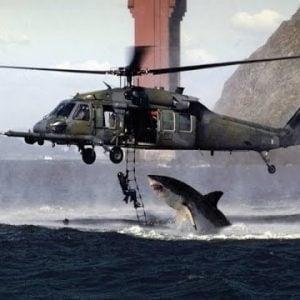 sharkattackshelicopter