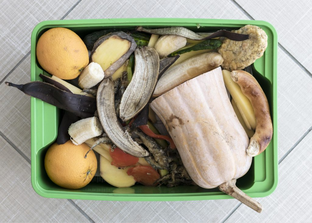 top view recycling bin with organic vegetables