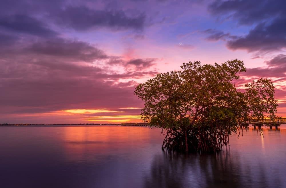 Jensen Beach via Cavan Images Shutterstock