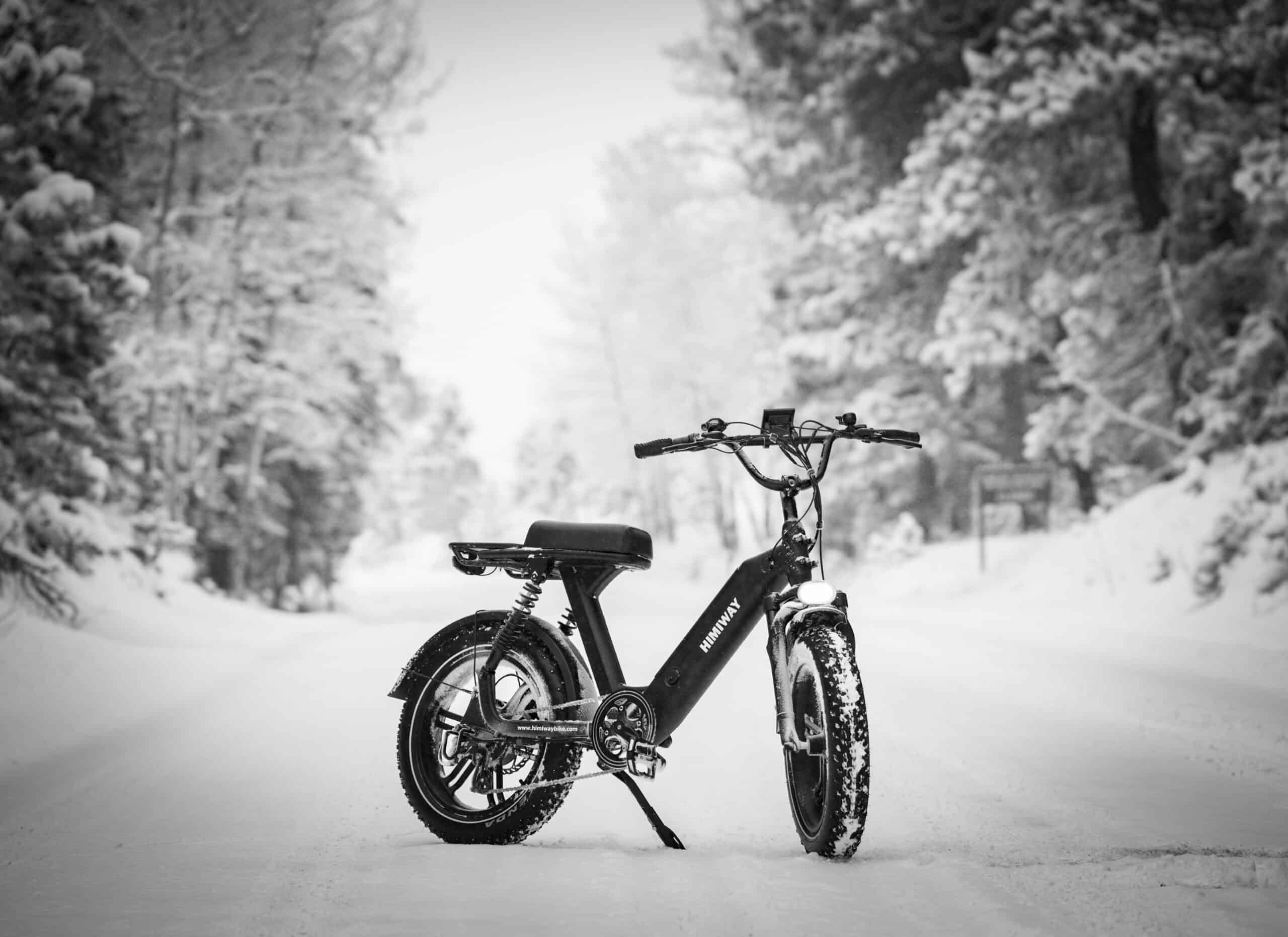 fat tire bike standing in the snow