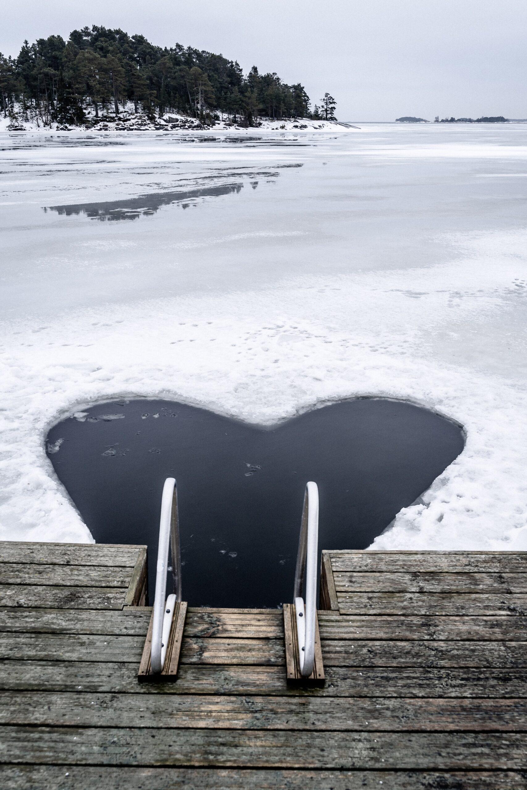 ice swimming whole