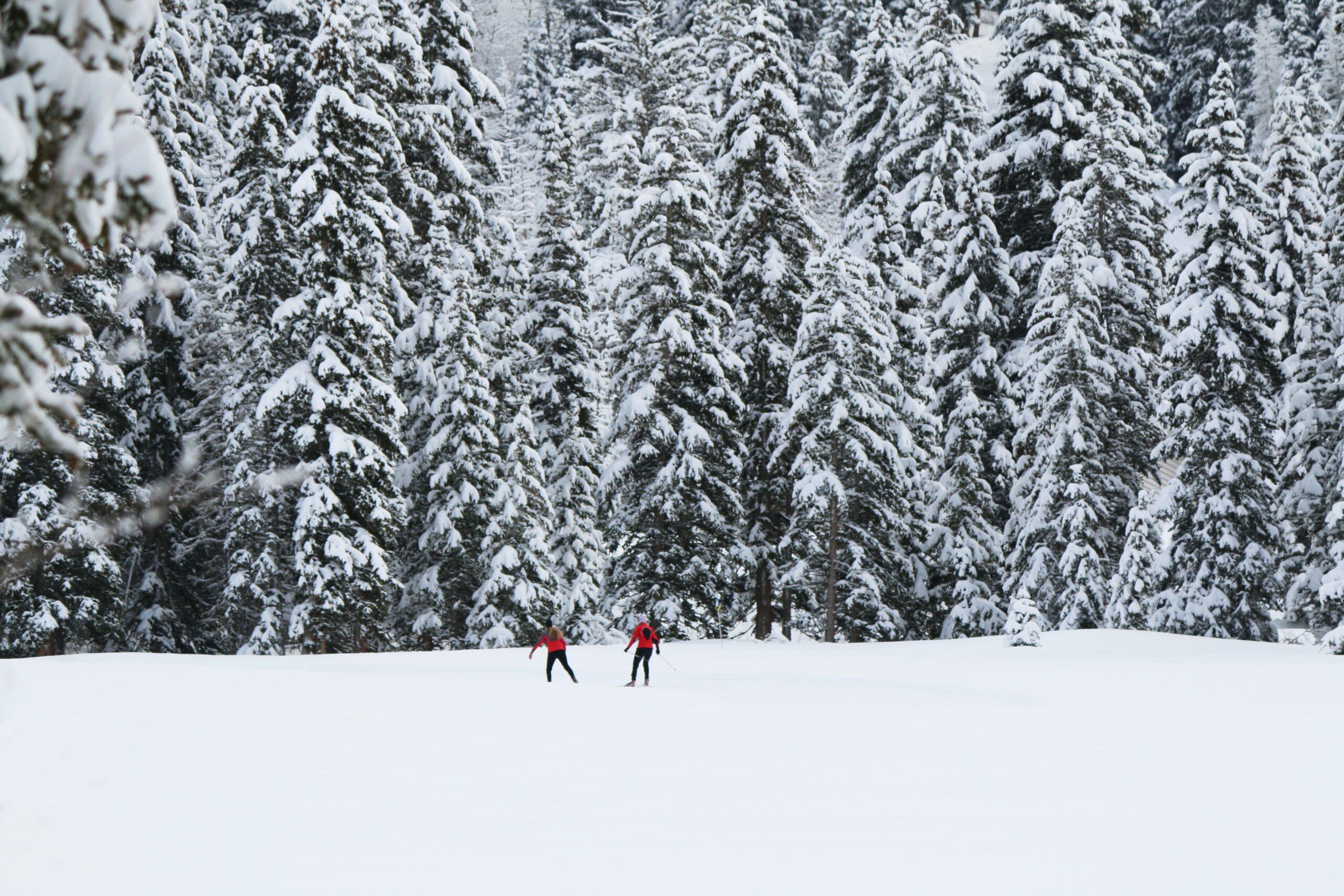 solitutude ski unsplash scaled